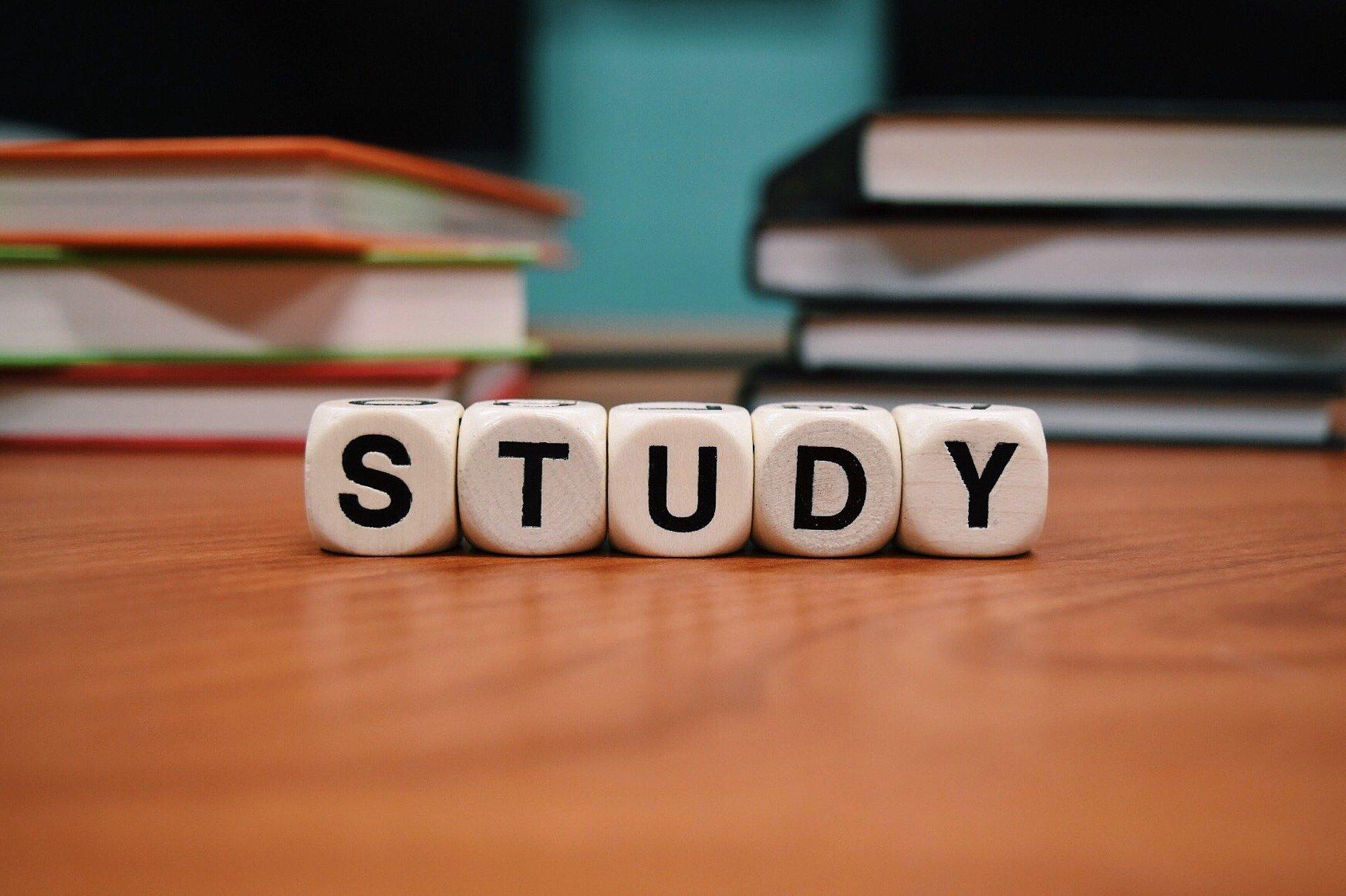 Studium